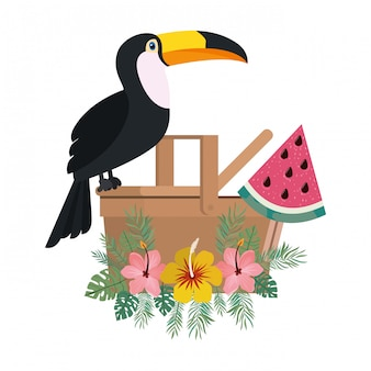 Picnic basket with tucan on white