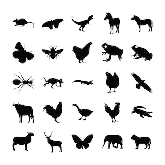 Pictograms of animals
