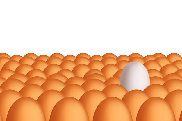 Picture of egg