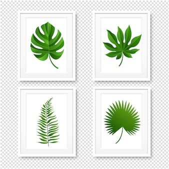 Picture frame with palms leaves isolated