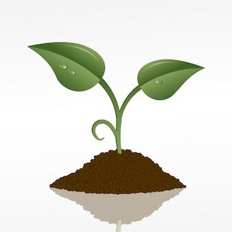 Изображение зеленого ростка в пригоршне почвы