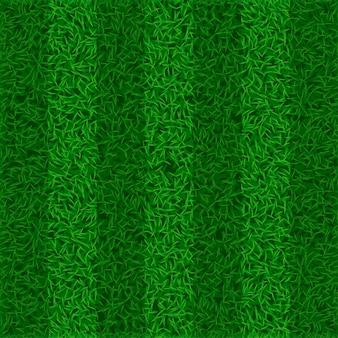 Изображение поля травы
