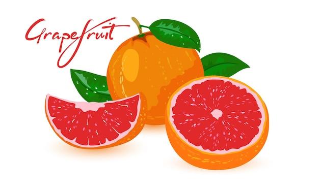 사진은 흰색 배경에 빨간색 중간 및 녹색 잎 전체 및 컷 시칠리아 오렌지를 보여줍니다