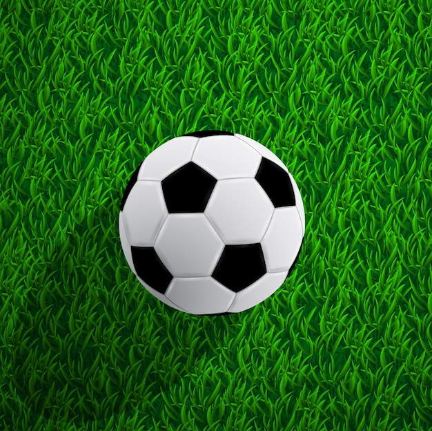 Picture of a soccer ball on grass,  illustration