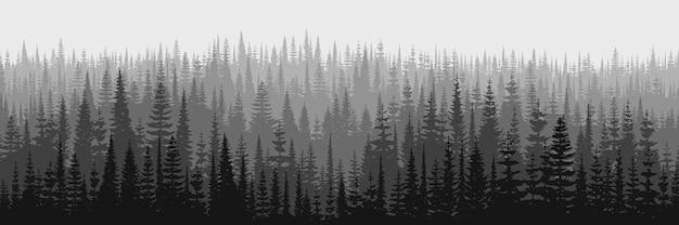 Живописный утренний вид горной тайги в тумане