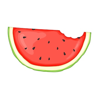 Piece of watermelon in a cute cartoon style. vector illustration isolated on white background.