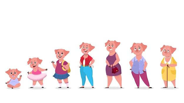 인간의 옷에 돼지 캐릭터 세트. 세대