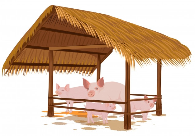 The pig family in straw hut vector design