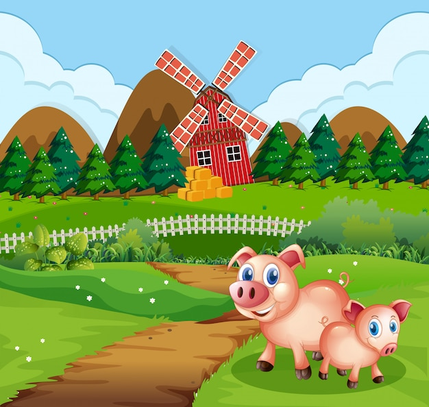 Pig at farmland scene