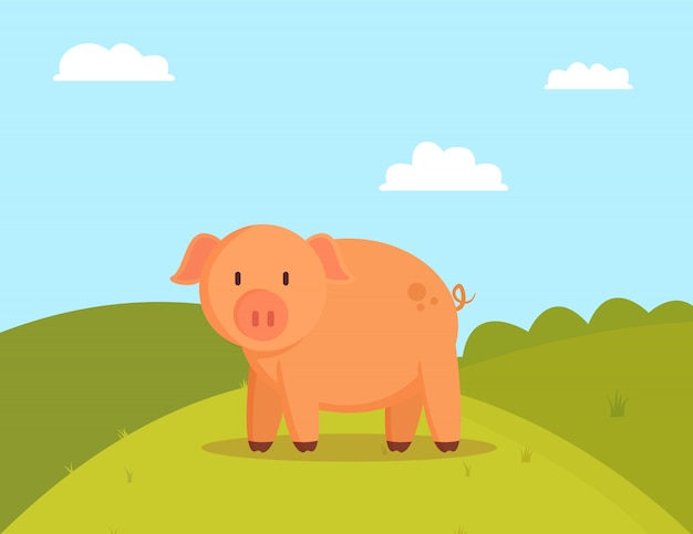Pig on green glade, image of fatty domestic pet