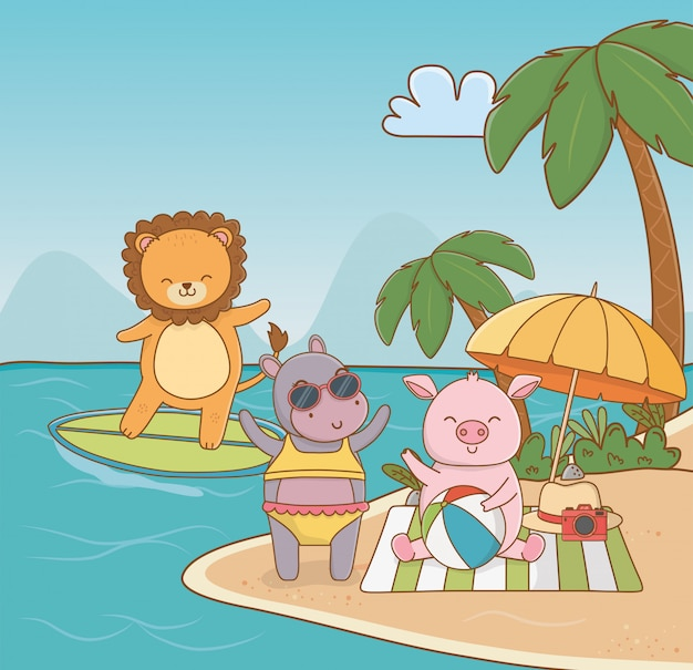 Pig hippo lion in the beach