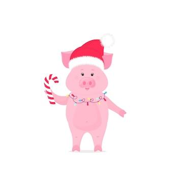 サンタクロースの帽子と縞模様のキャンディケインを保持しているクリスマスの花輪の豚