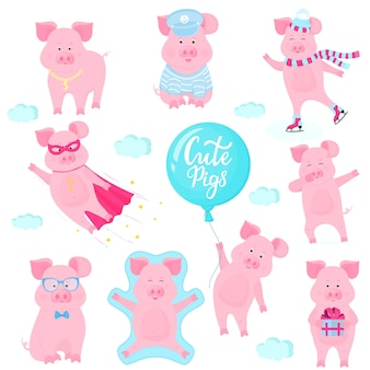 Pig_set_km12