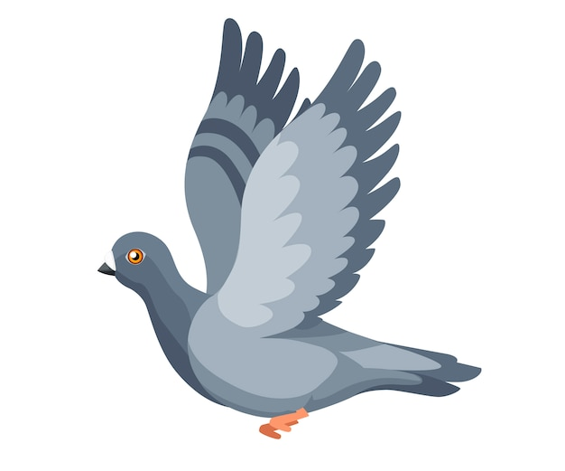 Pigeon bird flying, pigeon flaps its wings. flat cartoon character design. colorful bird icon. cute pigeon template. illustration isolated on white background.