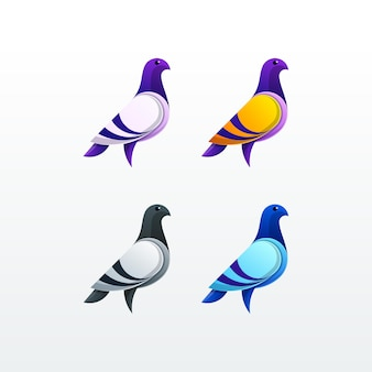 Pigeon character color illustration vector template