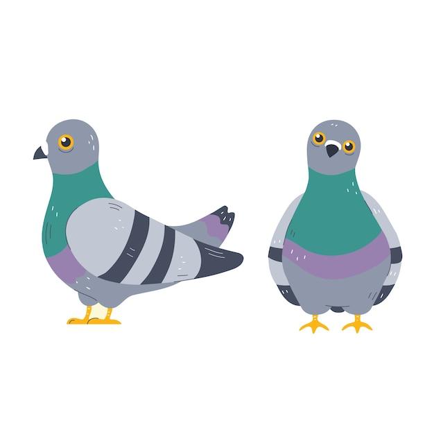 鳩の文字セット。漫画のキャラクターイラストアイコン。白い背景で隔離。鳩、鳩のコンセプト