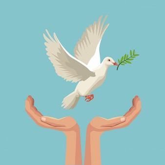 Pigeon flying with olive branch in peak and hands holding