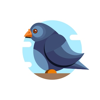 Pigeon vector character color flat illustration pigeon