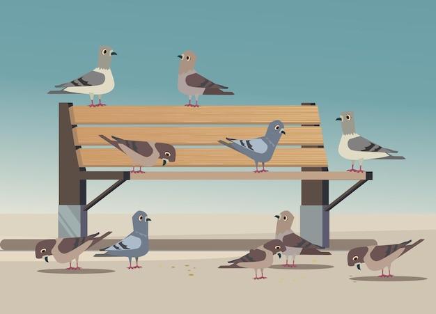공원에서 비둘기는 빵 부스러기 그림을 먹는다.