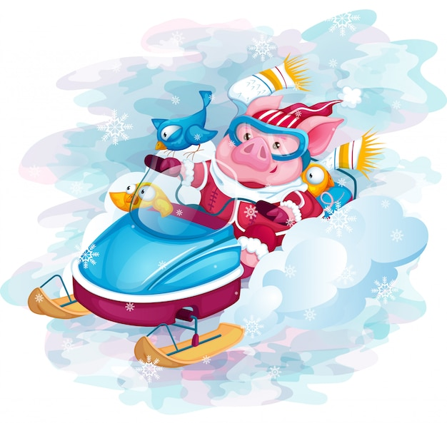 Piggy and birds ride fast snowmobile.