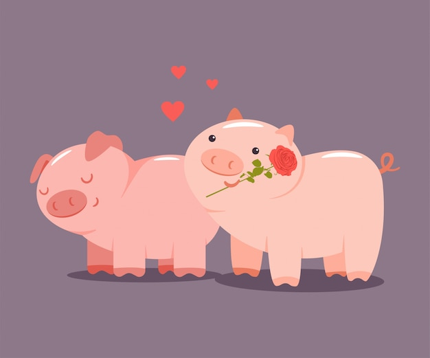 Pigs couple with a rose and hearts. valentine day vector cartoon cute animal character isolated