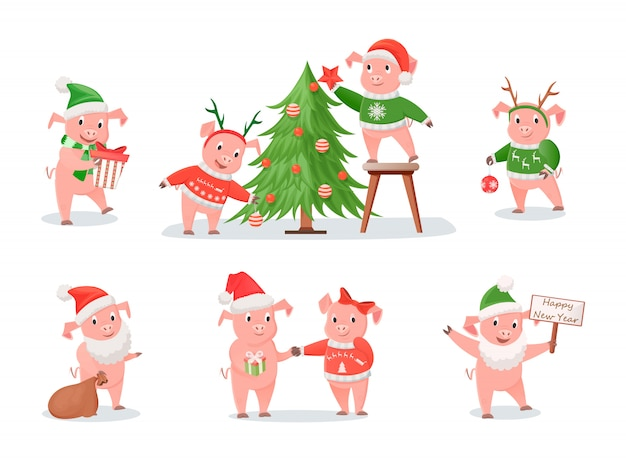 Pigs, zodiac symbol of new year 2019, christmas