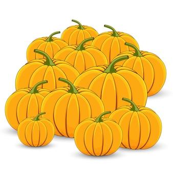 Pile of orange pumpkins on a white background.