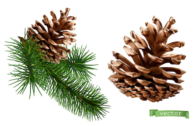 Pine cone christmas decoration 3d realistic vector icon