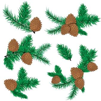 소나무 콘 크리스마스 장식입니다. 자연 소나무 콘 장식 가문비나무 크리스마스 녹색 숲 요소입니다. 에버그린 홀리데이 솔방울 가지 세트. 삼림 식물 상록 소나무 가지. 소나무 가지 숲 자연