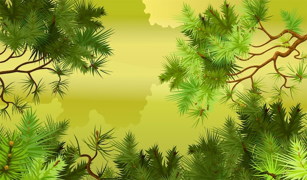 Pine forest background