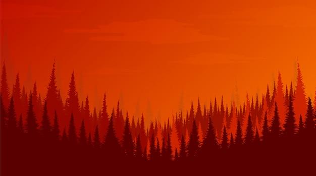 Сосновый лес, пейзажный фон, солнце и концепция восхода солнца