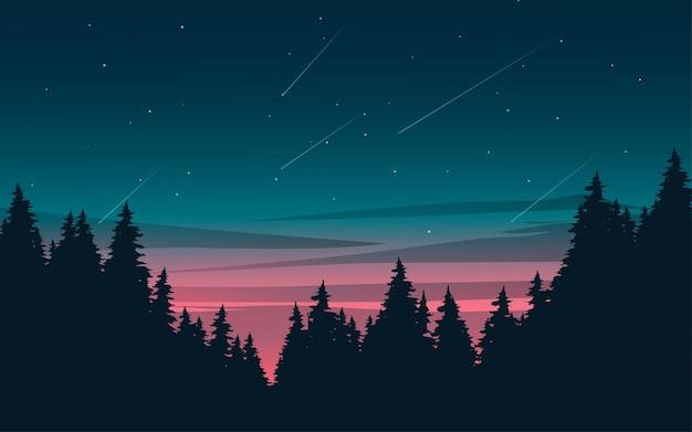 Силуэт соснового леса в вечернее время