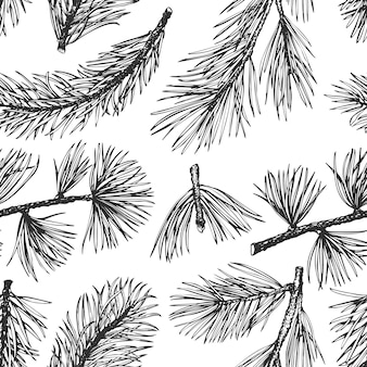 Pine needles hand drawn seamless pattern.