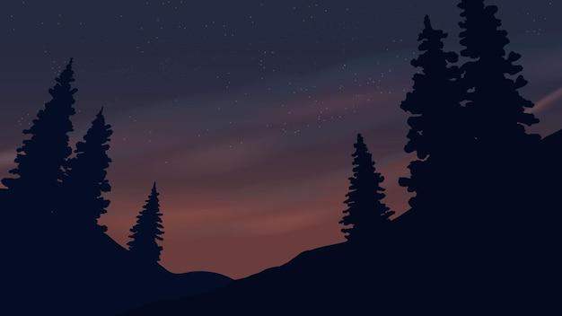 Pine tree silhouette at night