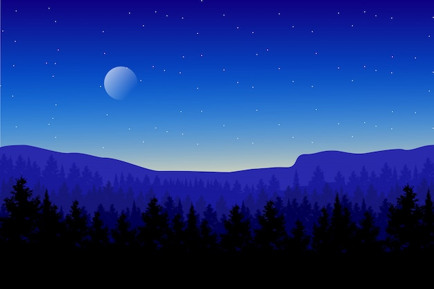 Pine wood forest landscape with blue sky and starry night illustration