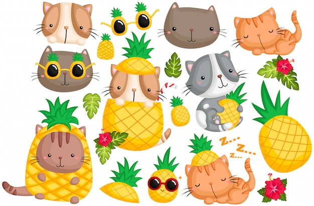 Pineapple cat vector set