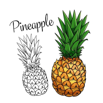Значок рисования ананас