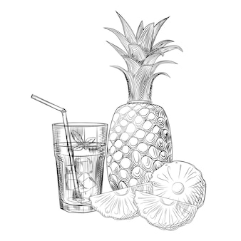 Pineapple fruit cocktail sketch. slices of pineapple.
