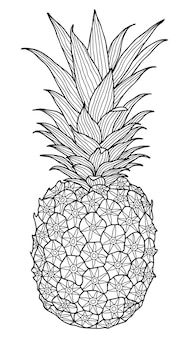 Pineapple illustration colouring book page for adult and children
