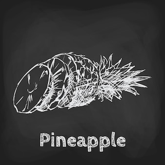 Pineapple sketch illustration hand drawn design usage element