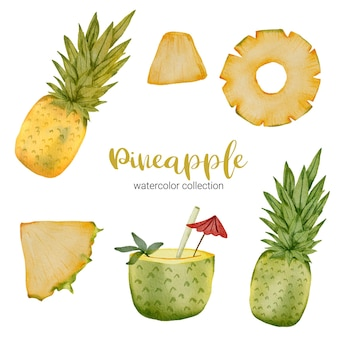 Pineapple in watercolor collection, full of fruit and cut into pieces and juice