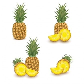 Pineapple on white background. tropical healthy tasty fruit, sweet ananas. healthy food concept. organic fresh gourmet pineapple. illustration