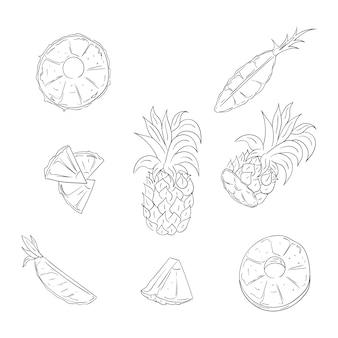 Pineapple, whole and sliced outline illustration set