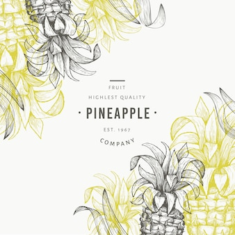 Pineapples and tropical leaves design template. hand drawn vector tropical fruit illustration. engraved style ananas fruit