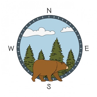 Pines trees forest scene with bear grizzly