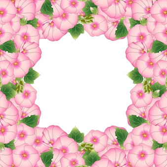 분홍색 alcea rosea 테두리