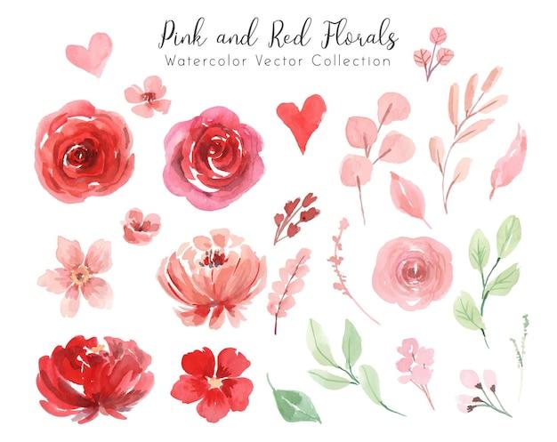 Коллекция акварелей розовых и красных цветов