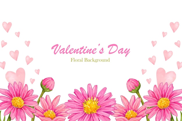 Pink aster valentine's day watercolor background