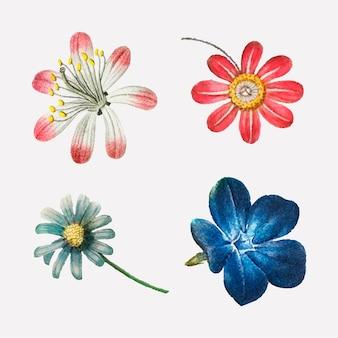 Illustrazione dell'annata stabilita di vettore del fiore rosa e blu