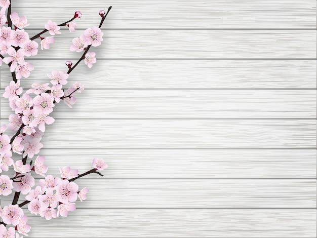 Розовая ветвь вишневого цвета на белом фоне старого дерева. весна реалистичная